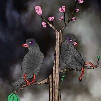 Sura fåglar